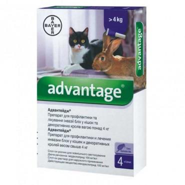 Капли от блох и клещей для кошек от 4 кг Bayer Advantage №80, 4 пипетки