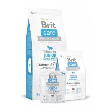 Корм для собак Brit Care GF Junior Large Breed Salmon and Potato