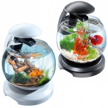 Круглый аквариум для рыбок Tetra Cascade Globe 6,8 л