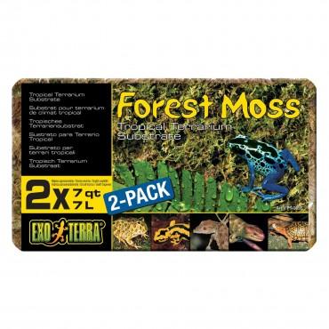 Наполнитель для террариума Exo Terra Forest Moss 7 л (500 гр) (мох) (PT3095)