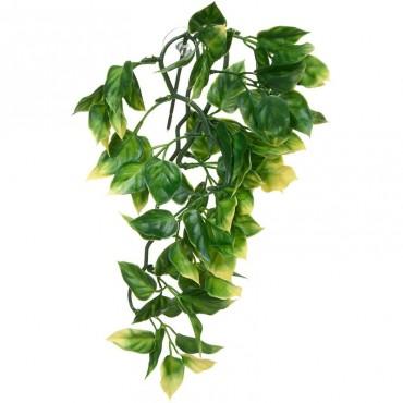 Растение для террариума Exo Terra Amapallo малое (PT3001)