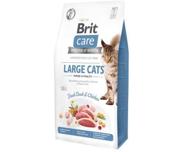 Сухой корм для кошек крупных пород Brit Care Cat GF Large cats Power and Vitality