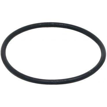 Уплотнительное кольцо моторного блока для аквариумных фильтров Fluval FХ5/FX6 (A20207)